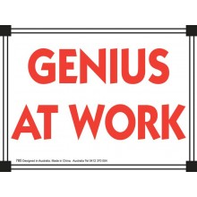 Fridge Magnet 785 - Genius at work